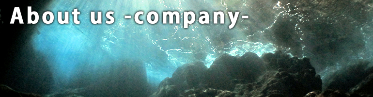 About us -company-